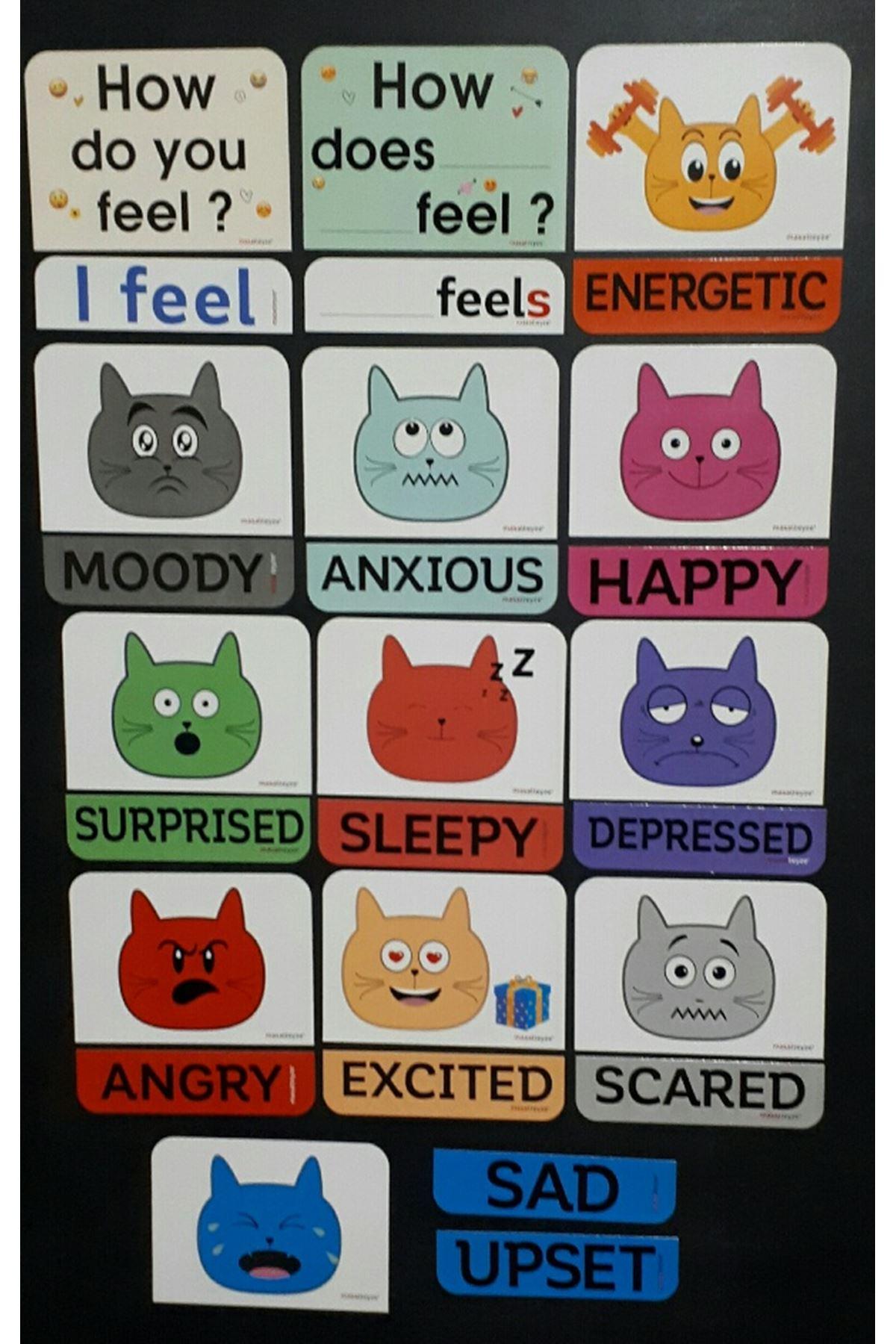EmotionMagnet Set 6. Sınıf
