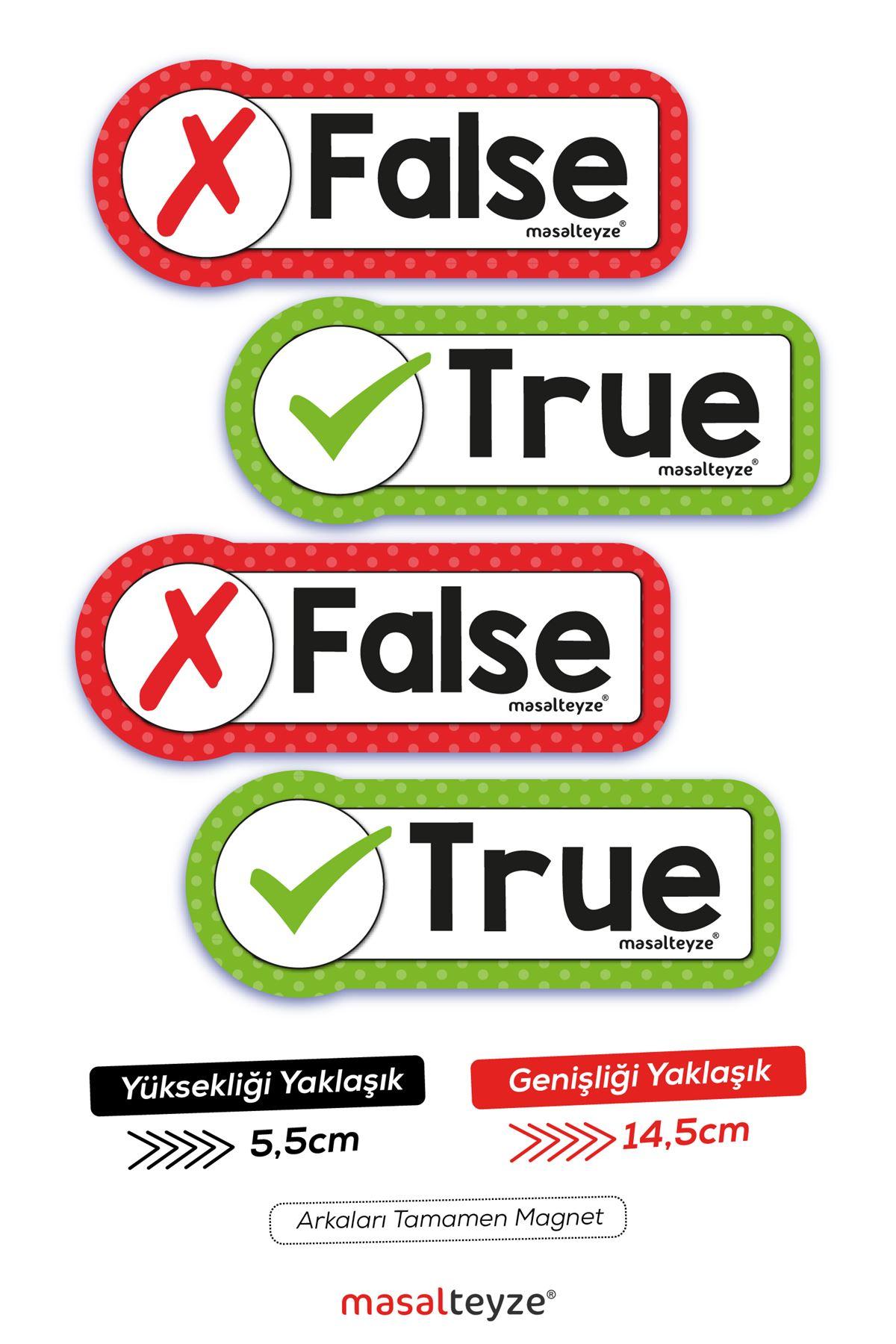 True-False 4'lü Magnet